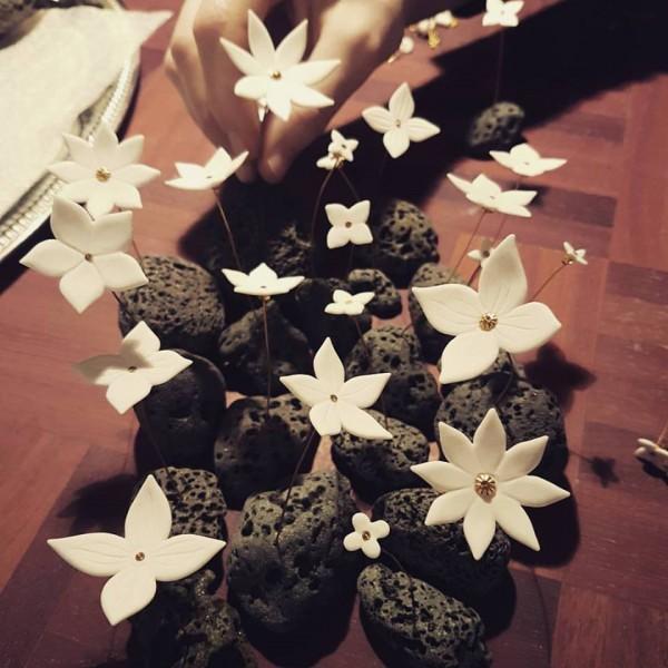 Winter flowers all
